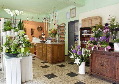 Blumen Schmidt Nürnberg - Blumen sind nicht gleich Blumen